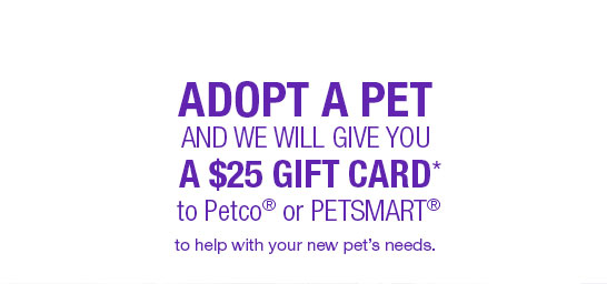 Adopt a pet and we will give you A $25 gift card* to Petco® or PETSMART® to help with your new pet's needs.
