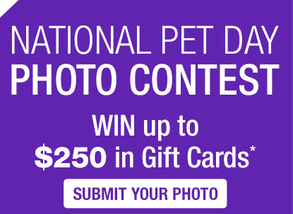 NATIONAL PET DAY PHOTO CONTEST WIN up to $250 in Gift Cards*