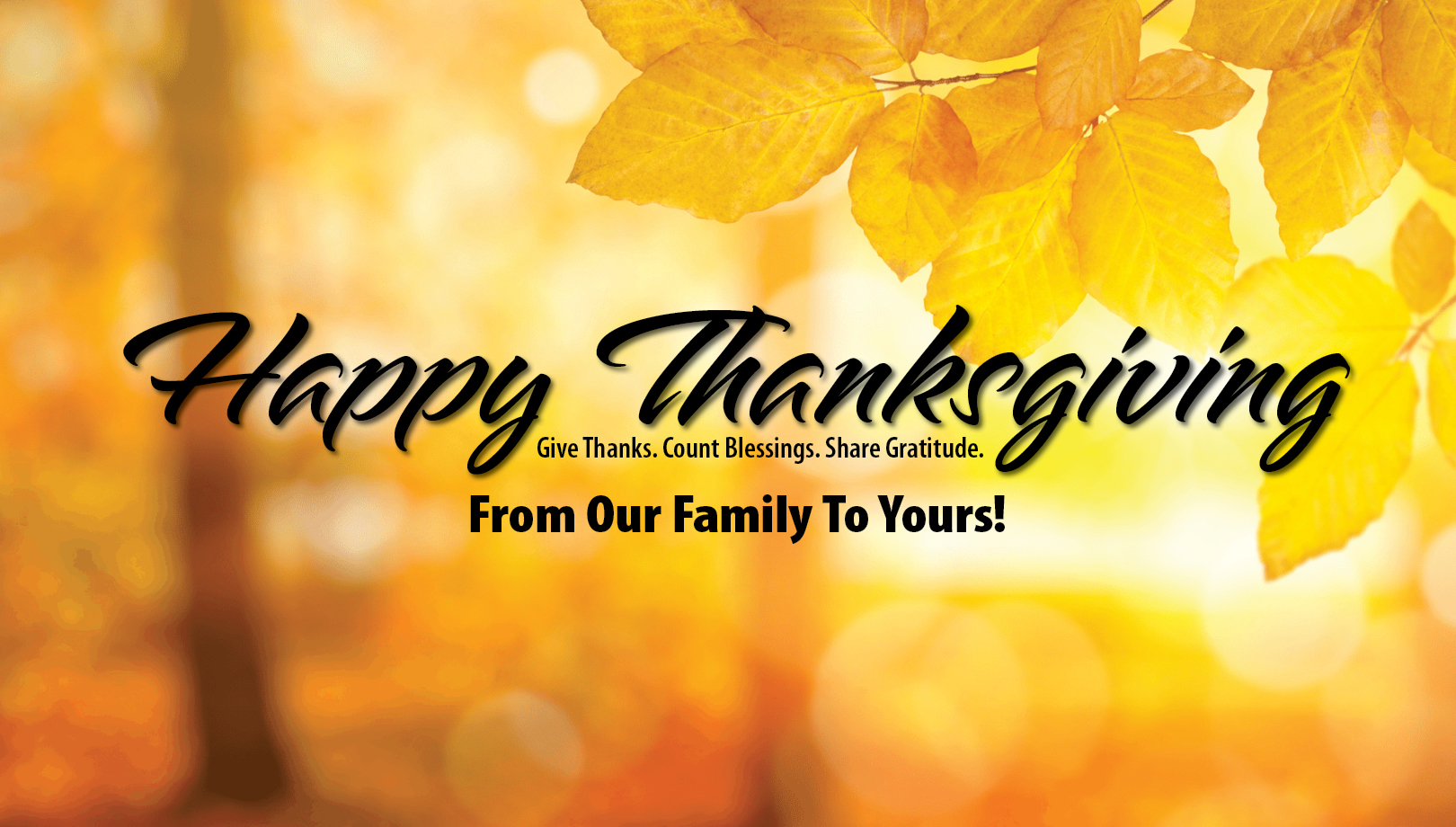Happy Thanksgiving. Give Thanks. Count Blessings. Share Gratitude. From Our Family To Yours!